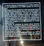 Musée des Confluences à Lyon DSCN7889