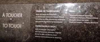 Musée des Confluences à Lyon DSCN7961