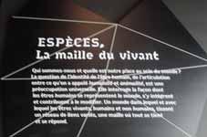 Musée des Confluences à Lyon DSCN7996