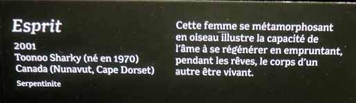 Musée des Confluences à Lyon DSCN8010