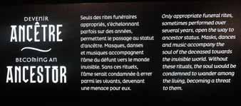 Musée des Confluences à Lyon DSCN8090
