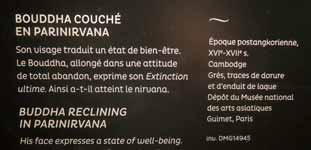 Musée des Confluences à Lyon DSCN8099